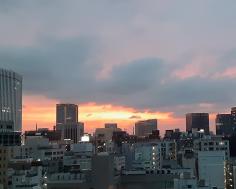 Tokio Kará: Contradicciones