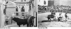 Aproximación a la fiesta de los toros en Albalate