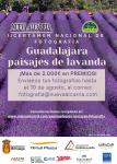 El II Certamen nacional de Fotografía Paisajes de Lavanda ofrece 2.000 euros en premios