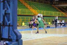 El Ayuntamiento repartirá 260.000 euros a los clubes y deportistas de Guadalajara