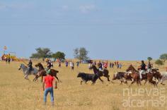 Atanzón consigue realizar con éxito su encierro a pie por el campo